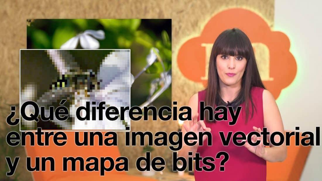 1x16 | ¿Qué diferencia hay entre una imagen vectorial y un mapa de bits?